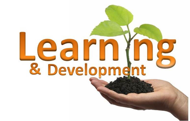 learning and dev